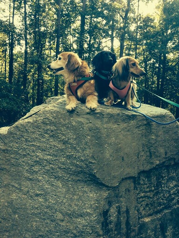 Climbing a rock.